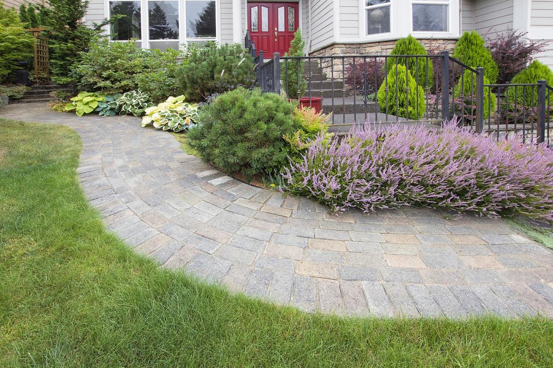 ​Landscaping Construction